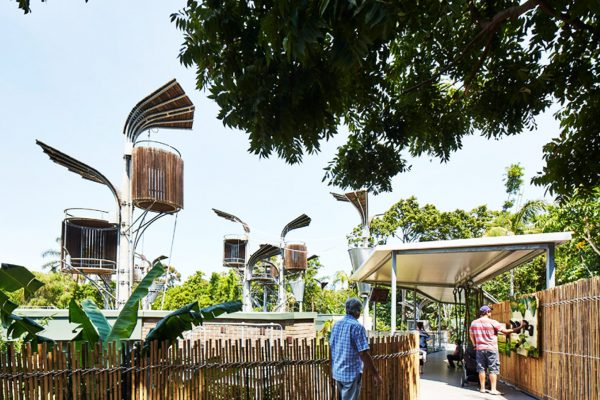 orangutan-zoo-construction